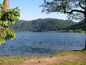 Vologne - The Lac de Longemer is traversed by the Vologne