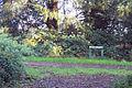 Lorenzo Trail - geograph.org.uk - 294629.jpg