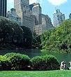 Central Park Landschaft