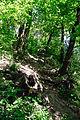 Lviv-140-03.jpg