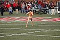 MIT streaker at HarvardYale game.jpg