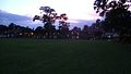 Main field at dusk.jpg