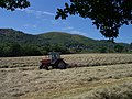 Making Hay while the Sun Shines - geograph.org.uk - 184466.jpg
