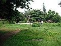 Malampuzha Gardens - panoramio (10).jpg