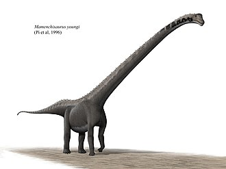 Mamenchisaurus - Artist's impression of M. youngi
