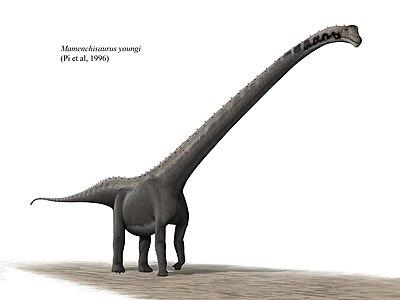 Mamenchisaurus youngi steveoc 86.jpg