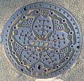 Manhole Cover in Tokyo.jpg