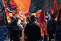 Manifestation parisienne du 10 juin 2008, zoom.jpg