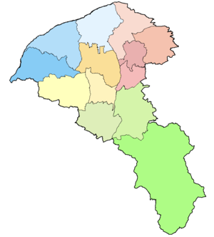 Map of Taoyuan City blank with light color.png