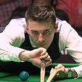 Mark Selby PHC 2012-2 cropped.jpg