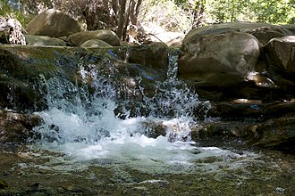 Matilija Creek - Matilija Falls
