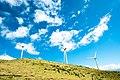 Maui Turbines (Unsplash).jpg