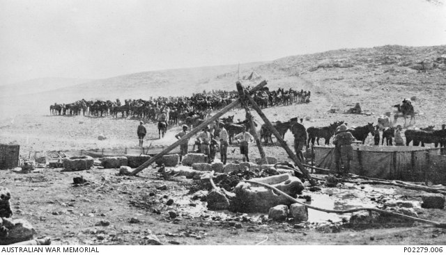 Men, horses and a camels gather around the wells at Tel el Khuweilfeh, Palestine, 1917-11-06 - P02279.006