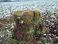 Menhir von Sippersfeld.jpg