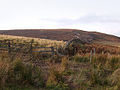 Mesling Crags - geograph.org.uk - 590356.jpg
