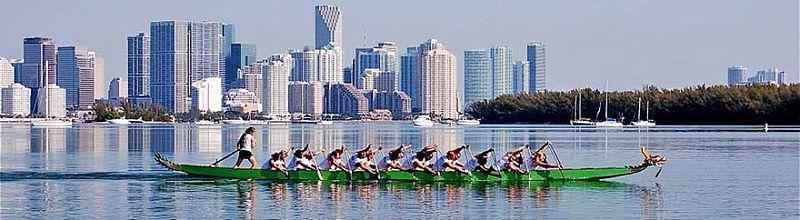 Miami Dragon Slayers.jpg