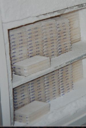 Yeast artificial chromosome - This is a photo of two copies of the Washington University Human Genome YAC Library. Each of the stacks is approximately 12 microtiter plates. Each plate has 96 wells, each with different yeast clones.