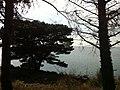 Miljevci, Montenegro - panoramio.jpg