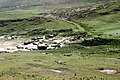 Mingulay main settlement from the North.jpg
