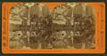 Mirror of Yosemite Falls, 2,634 feet high, Yosemite Valley, Cal, by Hazeltine, M. M. (Martin M.), 1827-1903.png