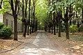 Mombello 09-2009 - panoramio (2).jpg