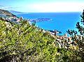 Monaco, vu de l'aire de repos de Beausoleil.jpg