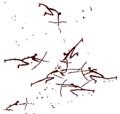 Morella (combate-de-arquero.png
