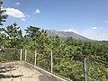 Mount Sakurajima from Tsukiyomi Shrine 4.jpg