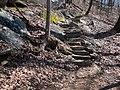 Mount Yonah Trail - panoramio (4).jpg