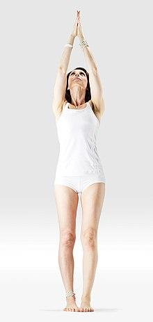 220px Mr yoga upward salute 2 yoga asanas Liste des exercices et position à pratiquer