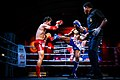 Muay Thai Fight Us Vs Burma (80668039).jpeg