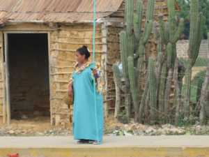 Colombians - The Wayuu represent the largest indigenous ethnic group in Colombia.