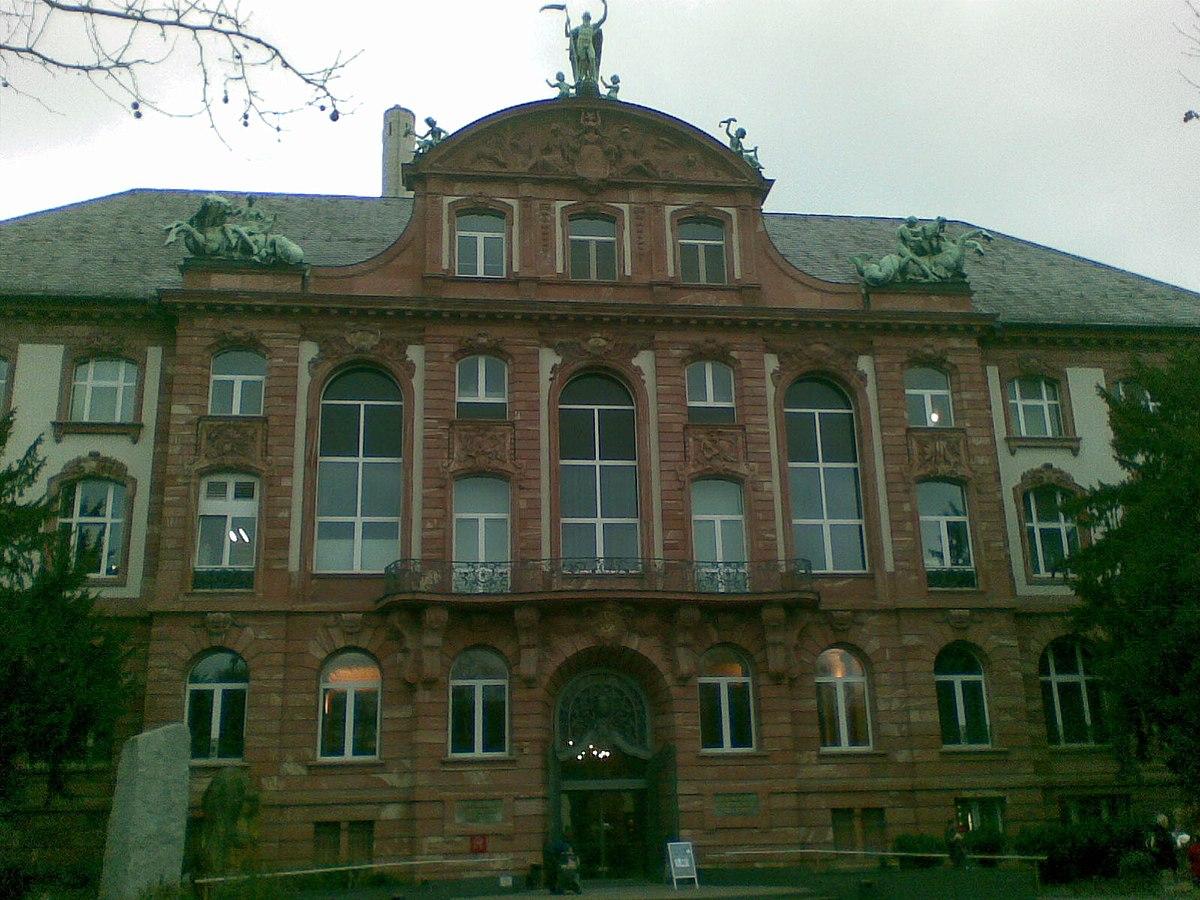 Schädel Museum Frankfurt