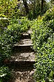 Myddelton House garden, Enfield, London ~ Lakeside path and steps 02.jpg