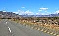 N9 close to the Beervlei Dam - panoramio.jpg