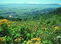 NRCSOR00067 - Oregon (5825)(NRCS Photo Gallery).tif