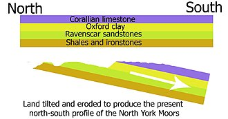 North York Moors - A cross section of the geology of the North York Moors.