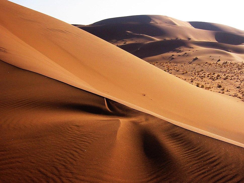 Namib Desert Namibia(2)