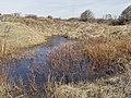 Nationaal Park Kennemerland (41327124062).jpg