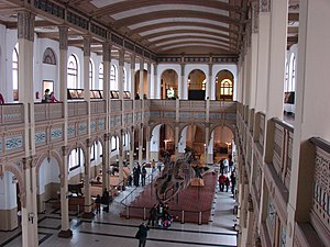Chilean National Museum of Natural History - The central hall, with a blue whale skeleton