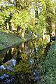 Naturschutzgebiet Mittleres Innerstetal mit Kanstein - Derneburg - die Nette unterhalb des Schlosses (14).JPG