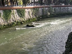 The river Nera in Terni