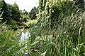 Ness Botanic Gardens, Wirral - geograph.org.uk - 290783.jpg
