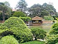 New York Botanical Garden 12.jpg