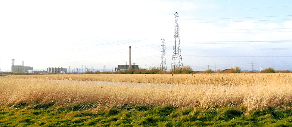 Newport Wetlands RSPB Reserve Fenced Pond