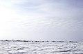 North Pole, Arctic Ocean, sea ice 02.jpg