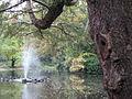 Nottingham Arboretum - geograph.org.uk - 1371830.jpg