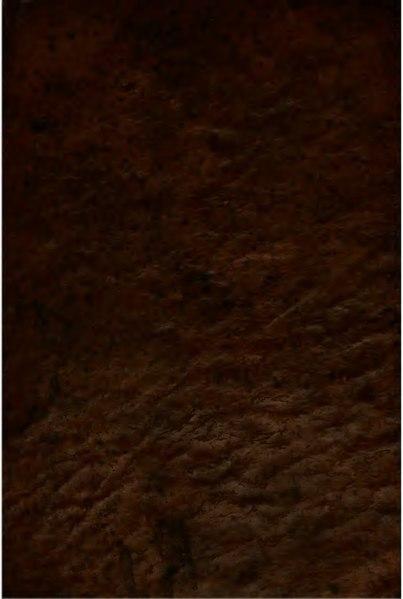 File:O engenhoso fidalgo dom Quixote de la Mancha - Tomo VI.djvu