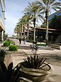 Ocotillo Corporate Center - panoramio (1).jpg