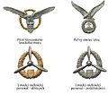 Odznaky vojakov vojnovej Slovenskej republiky 1939-45 letec spec.jpg